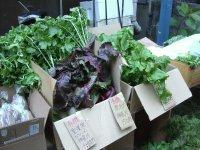 今回は「なないろ畑」(神奈川県大和市)の野菜も